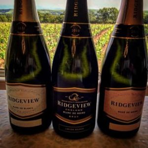 Ridgeview Winery