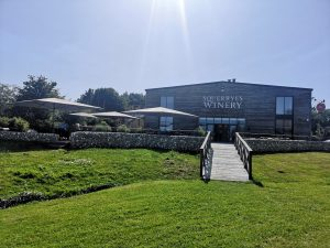 A vineyard day out from London: Squerryes Winery