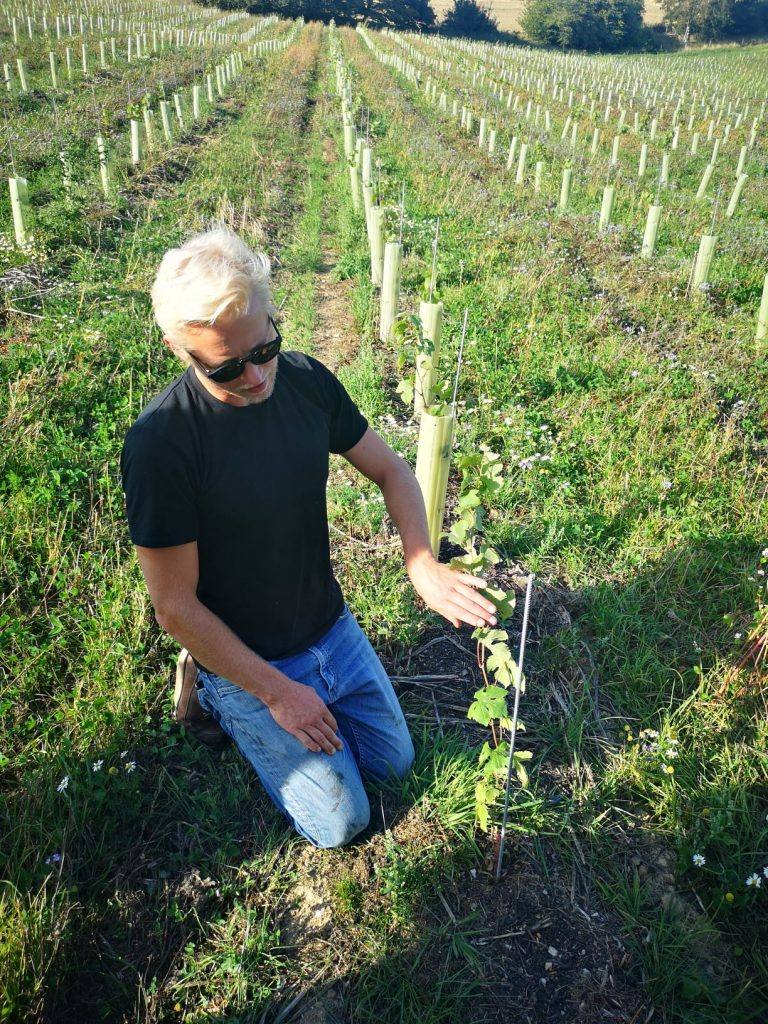 Ben Walgate, Winemaker of Tillingham Wines with the young vines in the vineyard