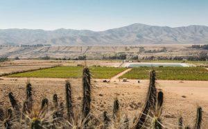 The Atacama Desert – the driest on earth