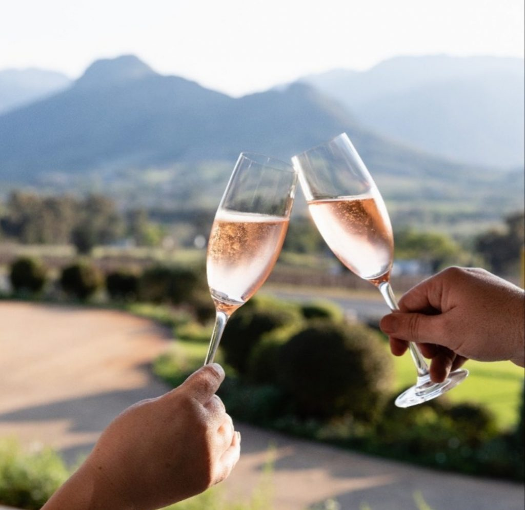 Cap Classique Rose wine clinking in South Africa